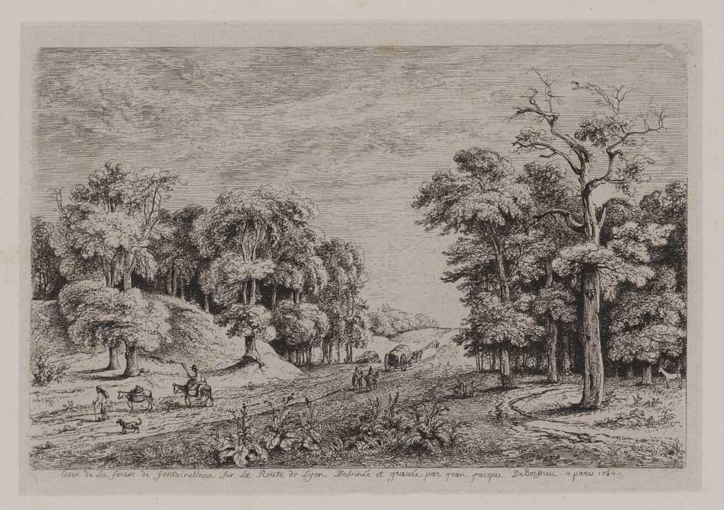 Bosweg Fontainebleau (no.34)