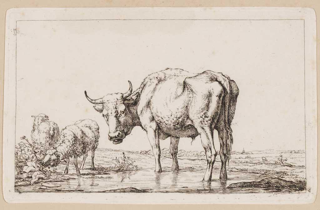 Stier met twee schapen in een landschap