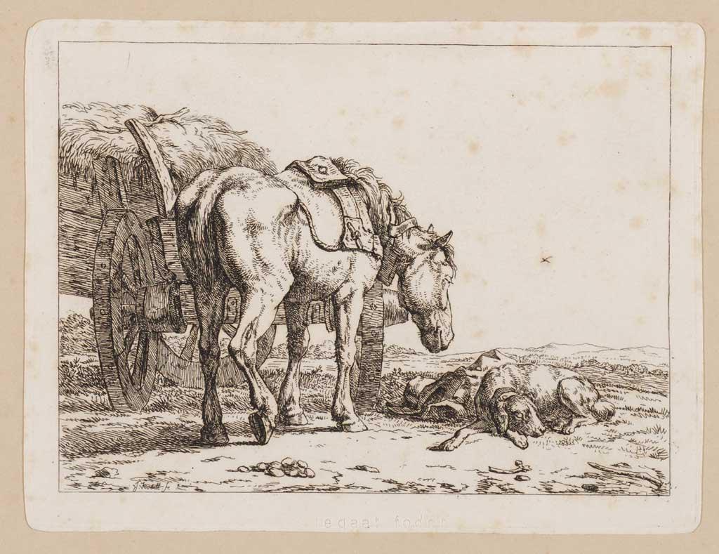 Paard met kar en hond