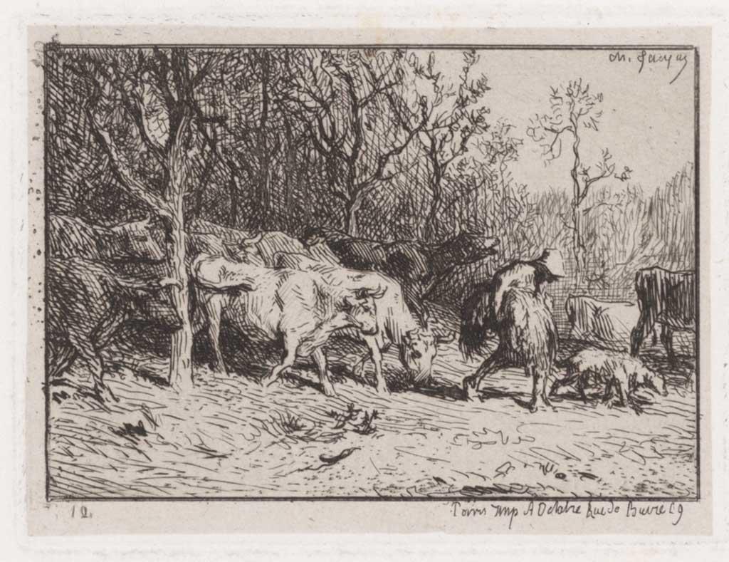 Boer met koeien