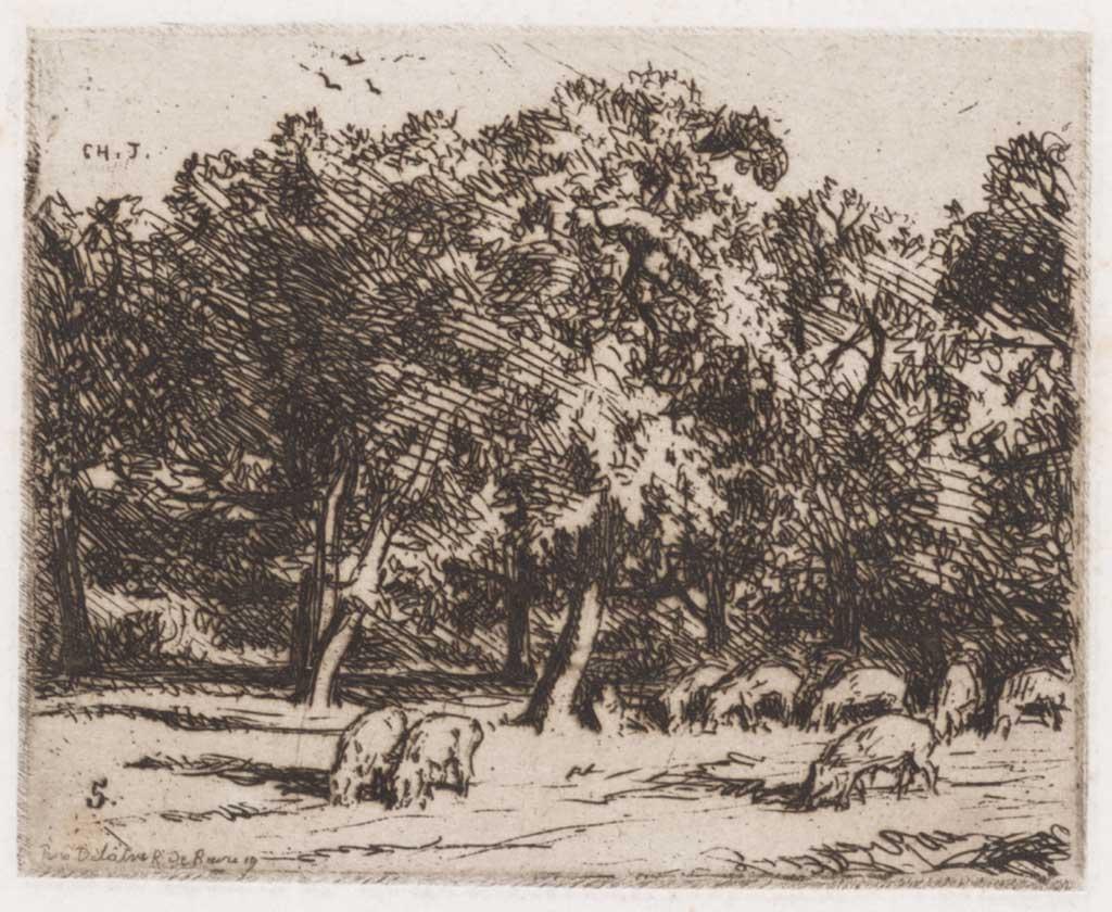 Varkens onder bomen