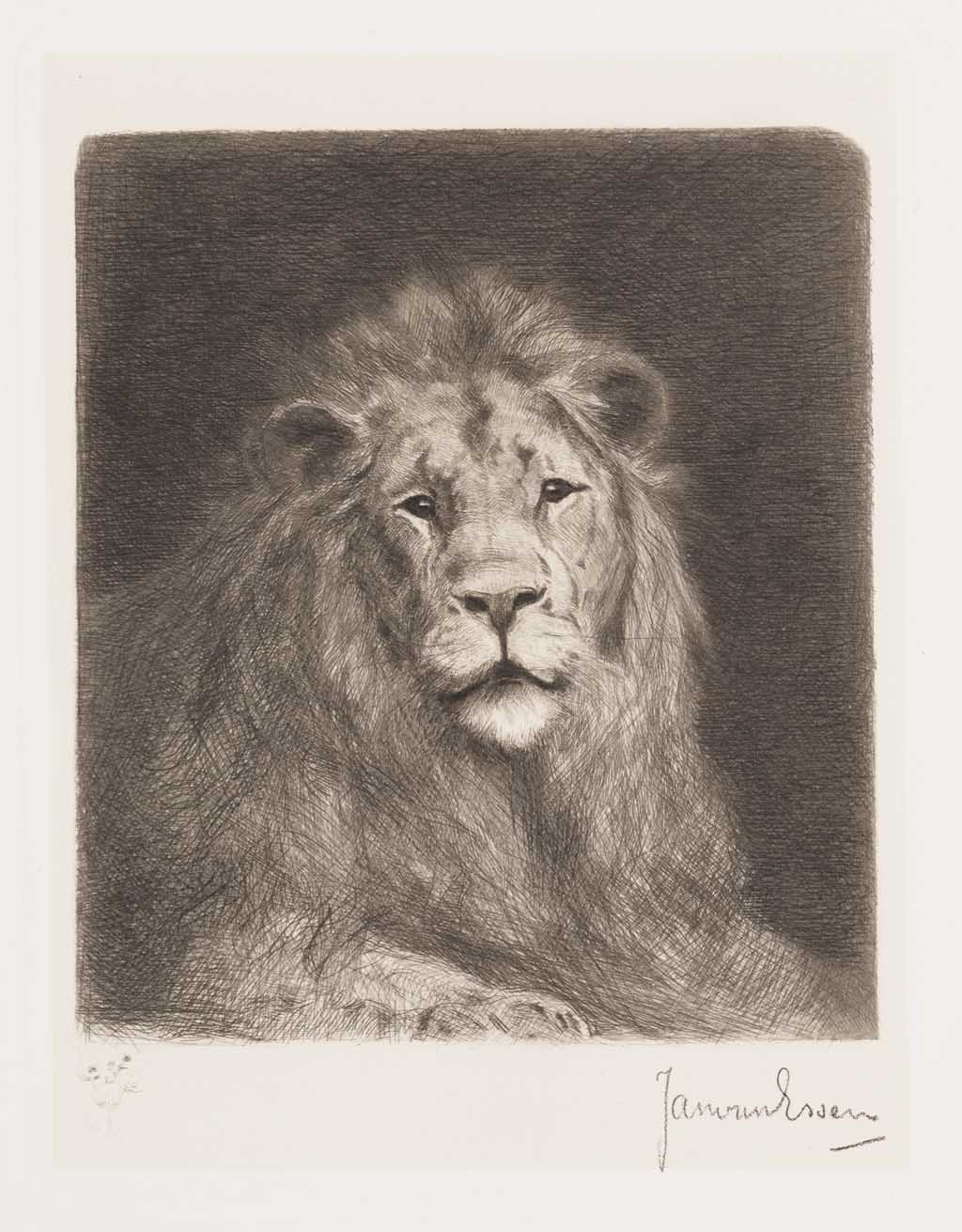 De Distel, etsen van Nederlandsche schilders, editie 1886 (afl. 3: Leeuwenstudie)