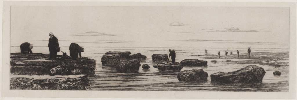 Strandgezicht met basaltblokken