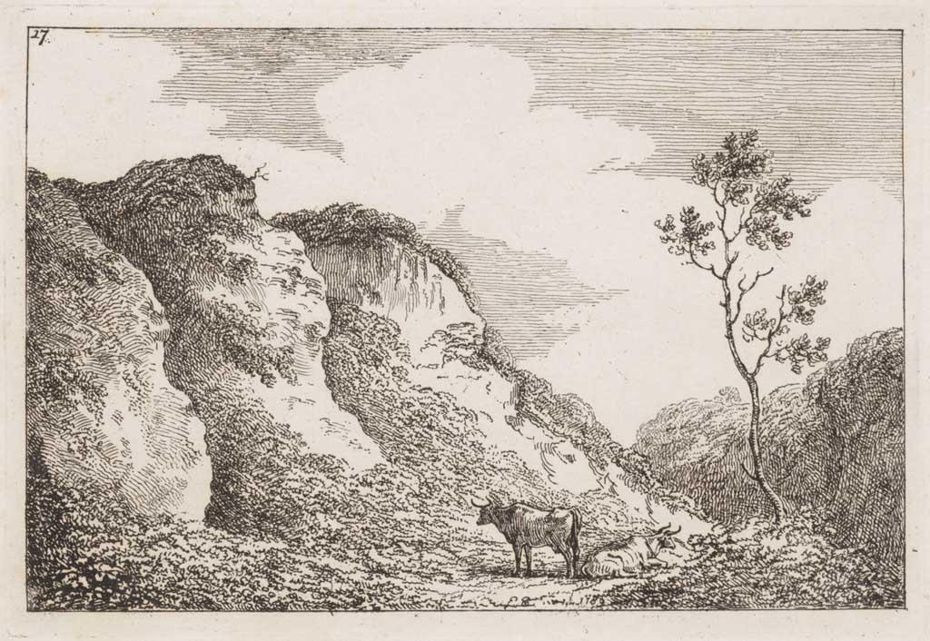 Landschap met steile helling en twee koeien