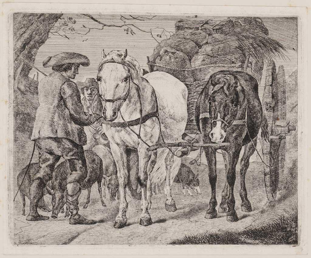 Vooraanzicht van twee paarden voor een hooikar