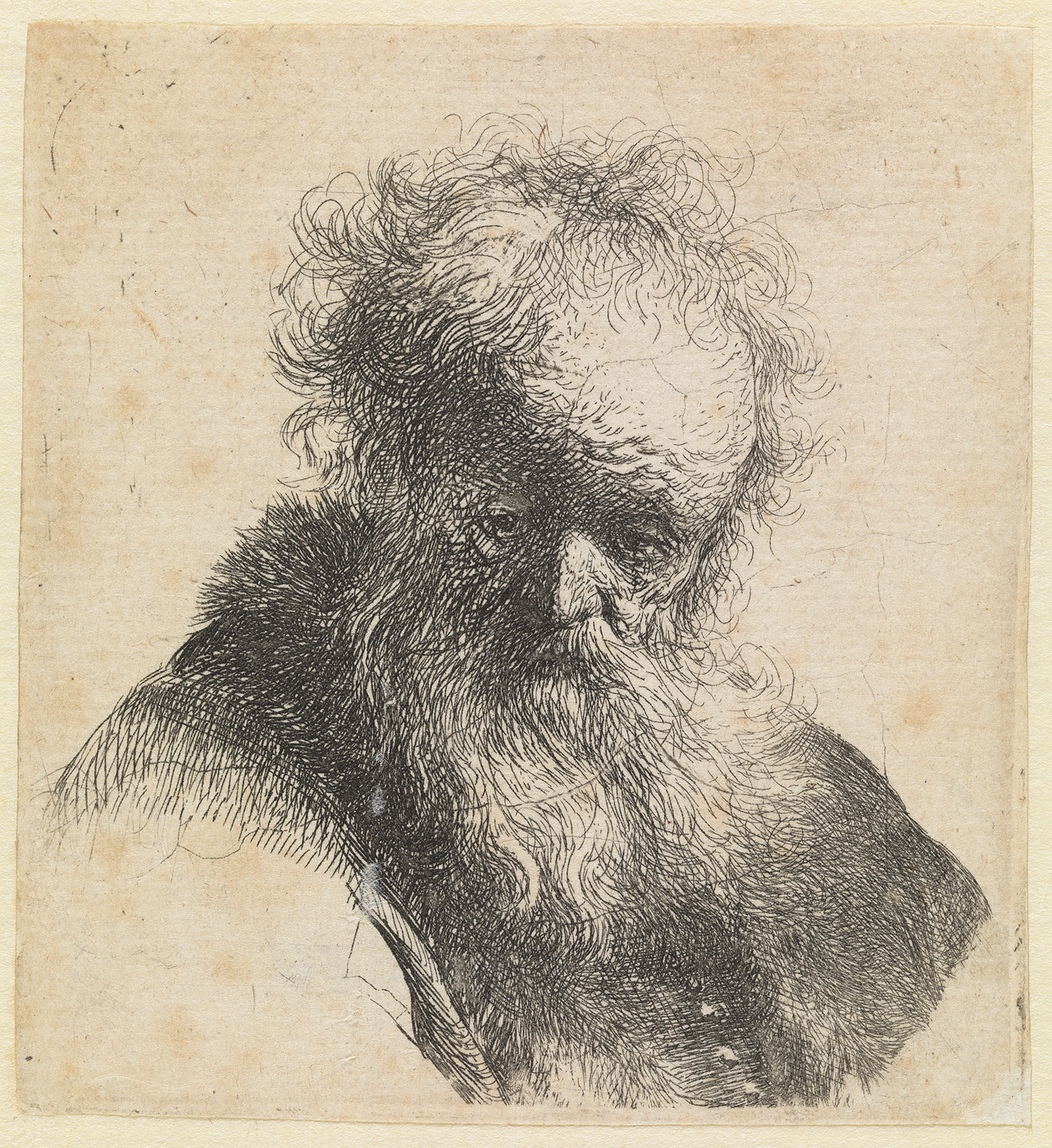 Oude man met lange baard en witte hemdsmouw: buste