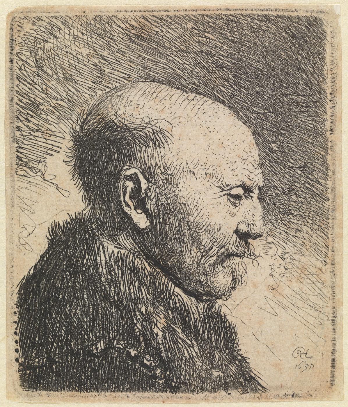 Kaalhoofdige oude man: profiel naar rechts; de vader van Rembrandt (?)
